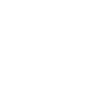Muletown Digital Web Design & Web Development (Williamsport, TN & Columbia, TN)