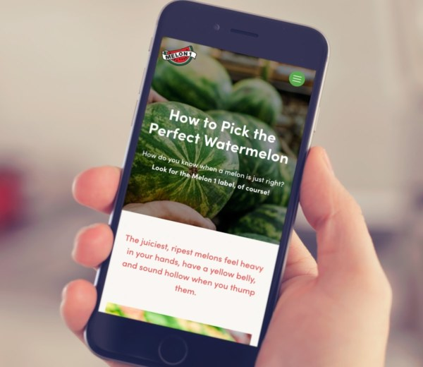 Agriculture and Farm Produce Website Mobile Example